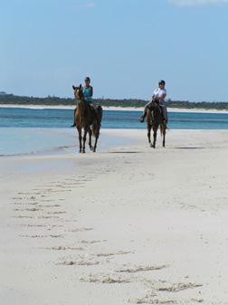 horseback riding along the beachjpg