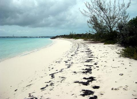 navidad-bahamas.jpg