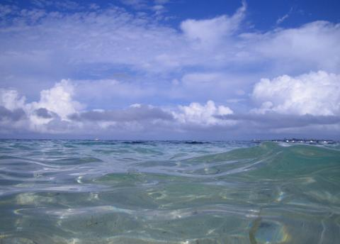 bahamas-riu.jpg