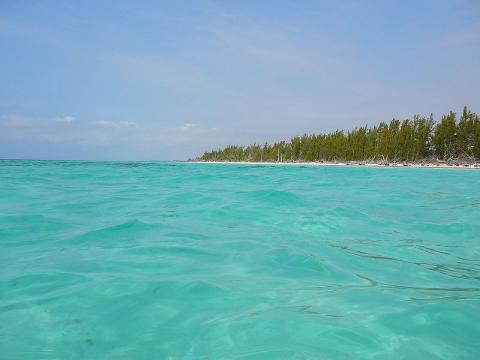 gran-bahama.jpg